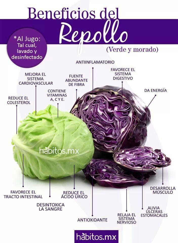 Repollo, col lombarda propiedades y beneficios. habitos.mx #ColLombarda #Repollo #ComerSano