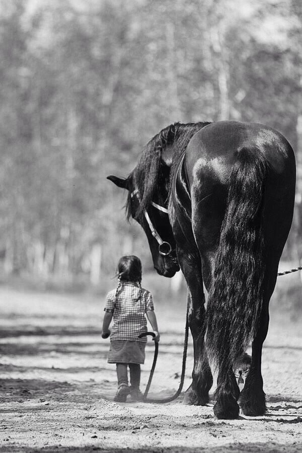 Shows that children have no fear, and horses are one of the great friends and guardians in the world.