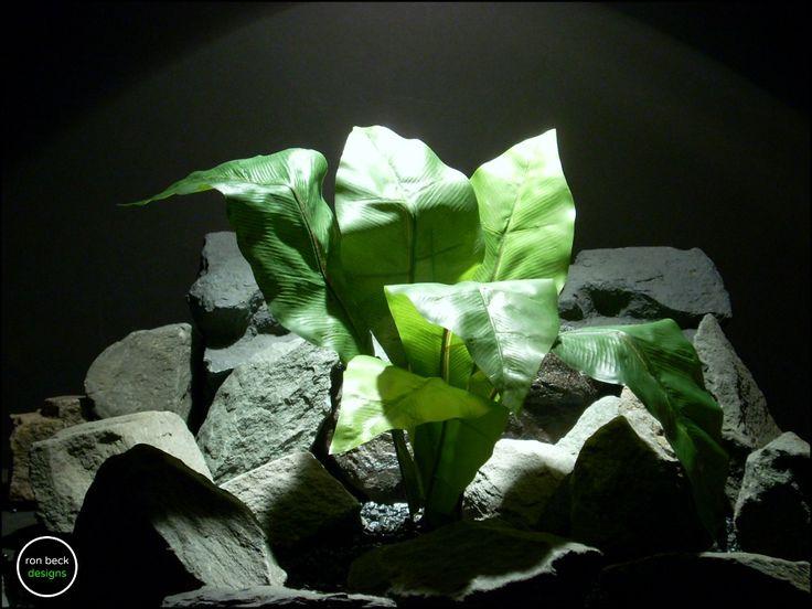 silk reptile plant: birds nest fern from ron beck designs. ronbeckdesigns.com #ron_beck_designs #aquarium #plant #decor #artificial #reptile #Reptile #Terrarium