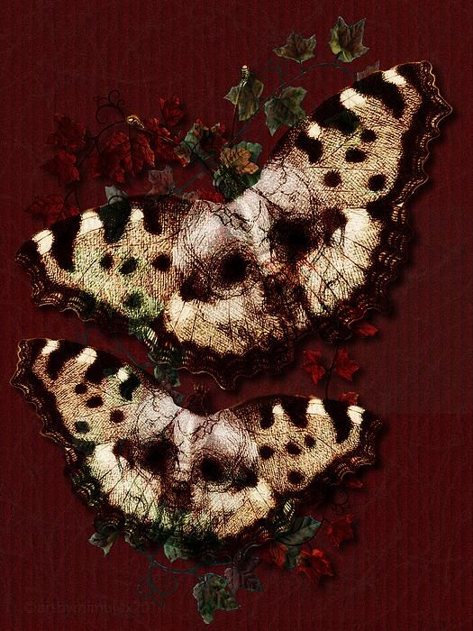 Butterfly Kisses by mimulux patricia no  Digital Mixed Media - Posters, Fine Art Prints and Cards for sale