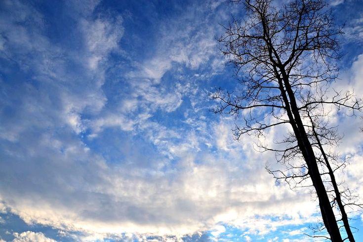 Beautiful winter skies https://urbanehillbillycanada.blogspot.ca/2018/02/bush-life-firewood-cutting.html