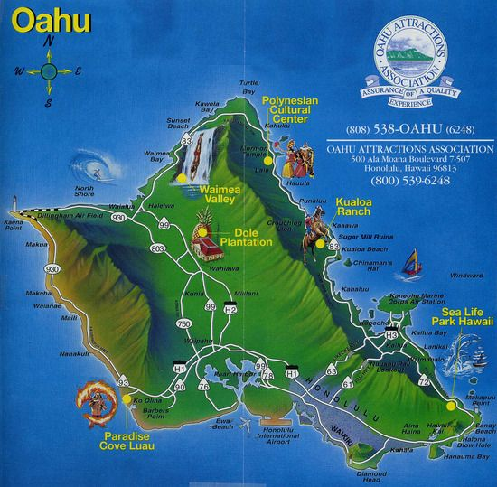 Oahu Hawaii...love to go again