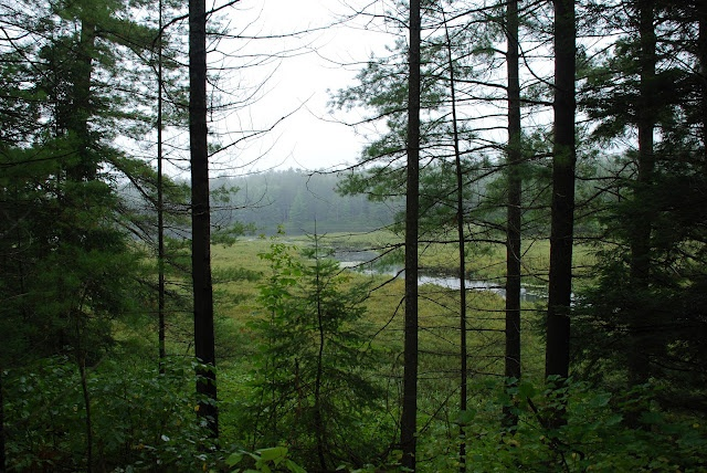 Bon Echo Provincial Park - Hiking in the rain is a great thing to do!