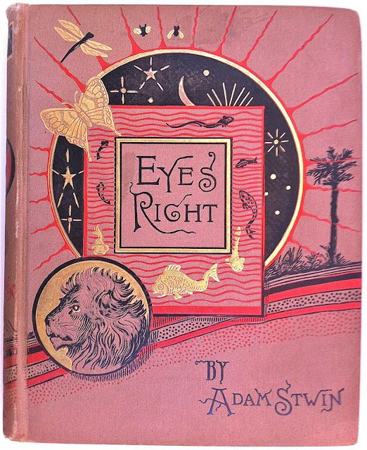 Eyes Right by Adam Stwin