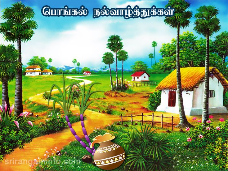 16 best download free greeting cards and images images on pinterest pongal greetings in tamil m4hsunfo