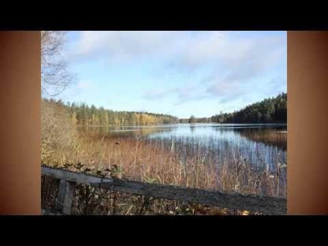 Höst i Sverige - SFI