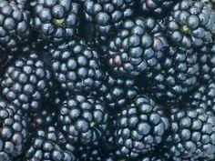 canning blackberry jam recipe