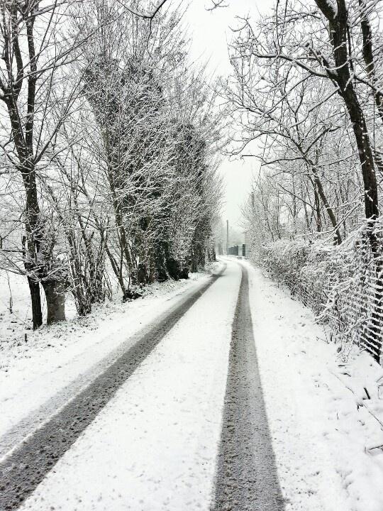 Snow,  Vigevano