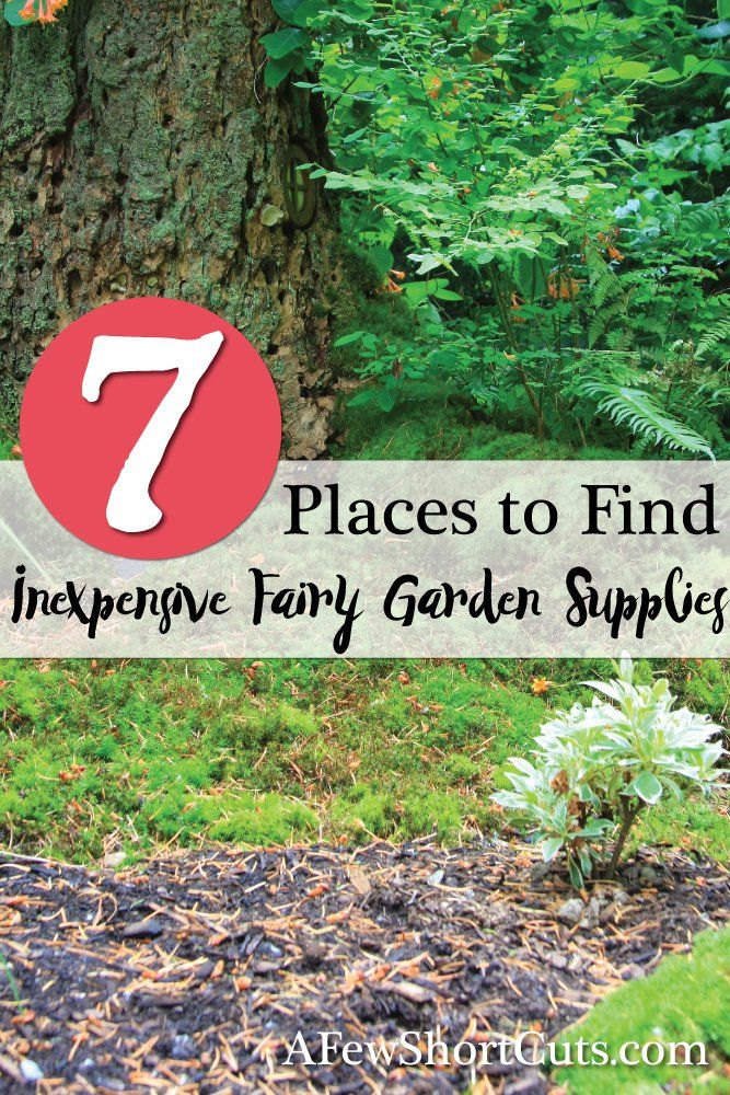 Make a fairy garden for less. 7 Places to find inexpensive to fairy garden supplies!