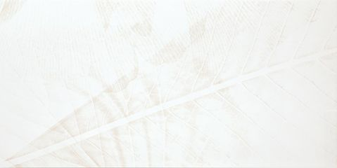 Dekor Zen R bílá 29,8x59,8 cm, lesk, rektifikovaná