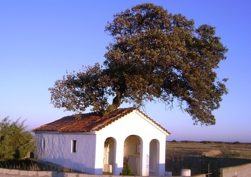 A chapel in Lemnos, with a tree growing in front of the chapel's door...