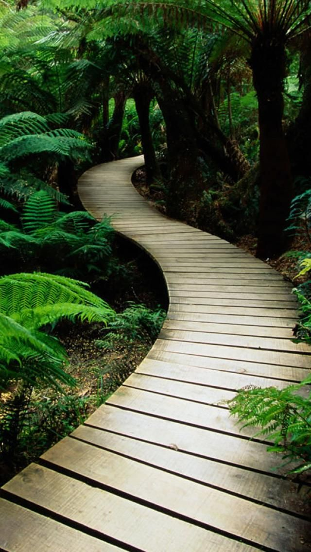 Diy Raining Men Costume: 17 Best Images About Beautiful Pathways On Pinterest