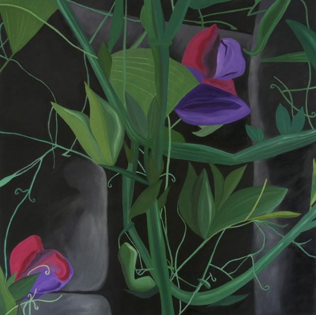 'Sweet pea' oil on canvas 1x1m