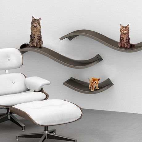 Cat Wall Perch.