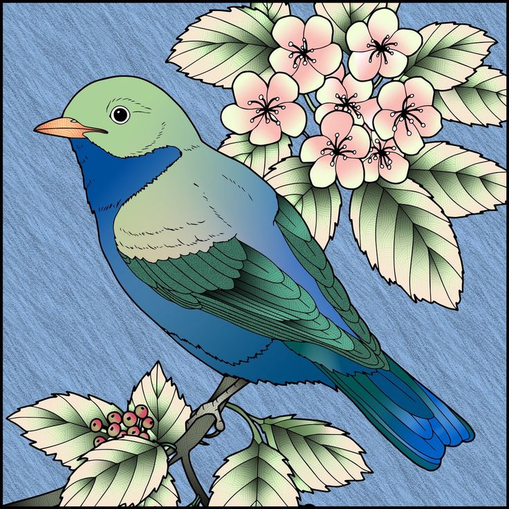 Love The Way Enzo Martinelli Colored This Sweet Little Bird Coloring Page Have You Tried Pigment App Yet Its Best Adult For