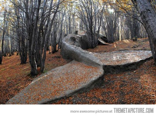 A hauntingly beautiful whale statue in the middle of the woods…all I see is one big Hitchhiker's reference!
