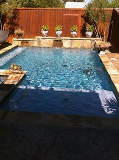 Straight Line Pool In Dallas With Raised Back Wall With