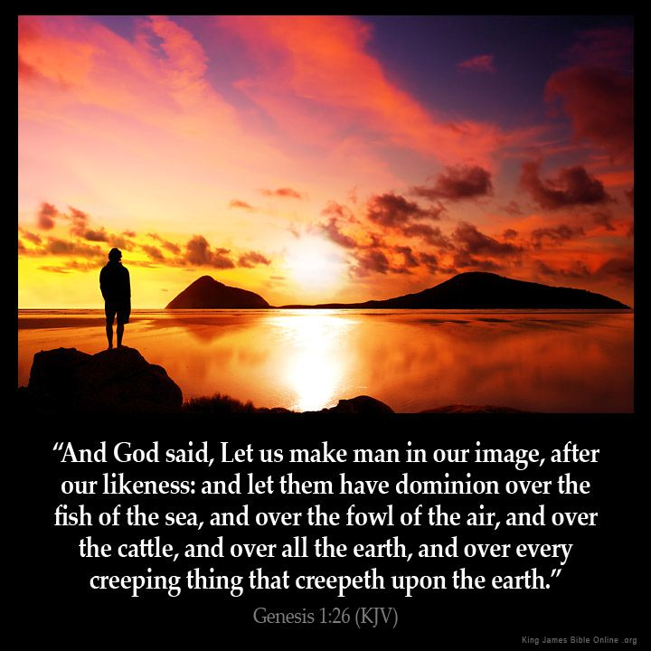 Genesis 1:26 And God said Let us make man in our image after our likeness: and let them have dominion over the fish of the sea and over the fowl of the air and over the cattle and over all the earth and over every creeping thing that creepeth upon the earth. Genesis 1:26 (KJV) from King James Version Bible (KJV Bible) http://ift.tt/1LGn0eA Filed under: Bible Verse Pic Tagged: Bible Bible Verse Bible Verse Image Bible Verse Pic Bible Verse Picture Daily Bible Verse Genesis 1:26 Image King…