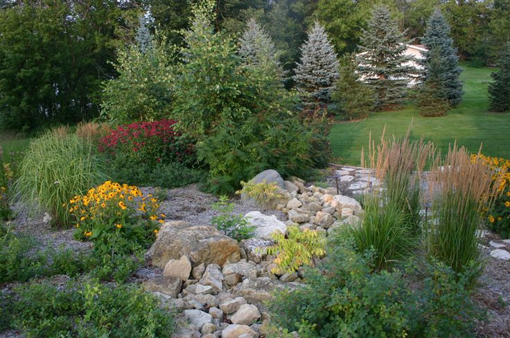 49 best images about slope drainage on pinterest for Low maintenance low water landscaping