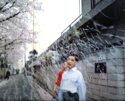 Nan Goldin, Honda Brothers in cherry blossom storm, Tokyo, 1994