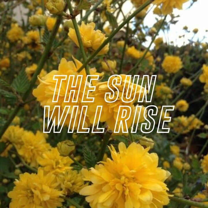 """O sol vai nascer."""