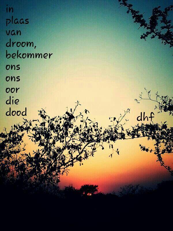 Inplaas van droom bekommer ons ons oor die dood - die heuwels fantasties lirieke ... agtergrond - sonsak van ons dak af geneem...