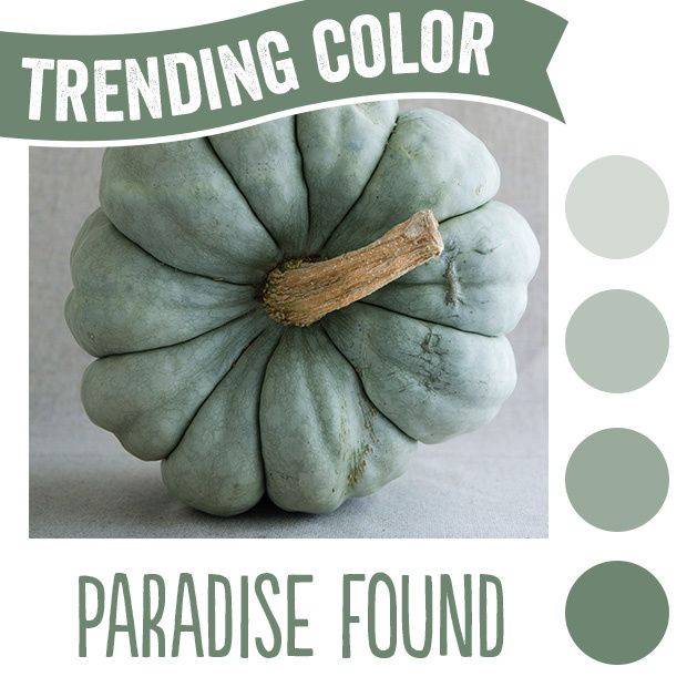 1000 Images About 2016 Paint Color Of The Year Paradise