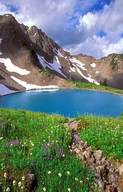 Alpine lake & meadow ~ Olympic National Park, Washington