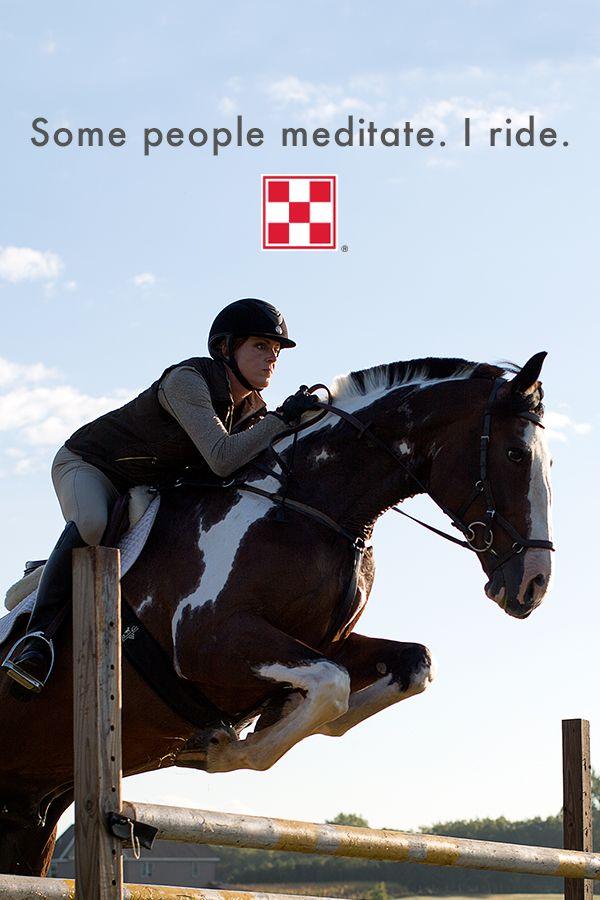 #Horse #Horsesayings