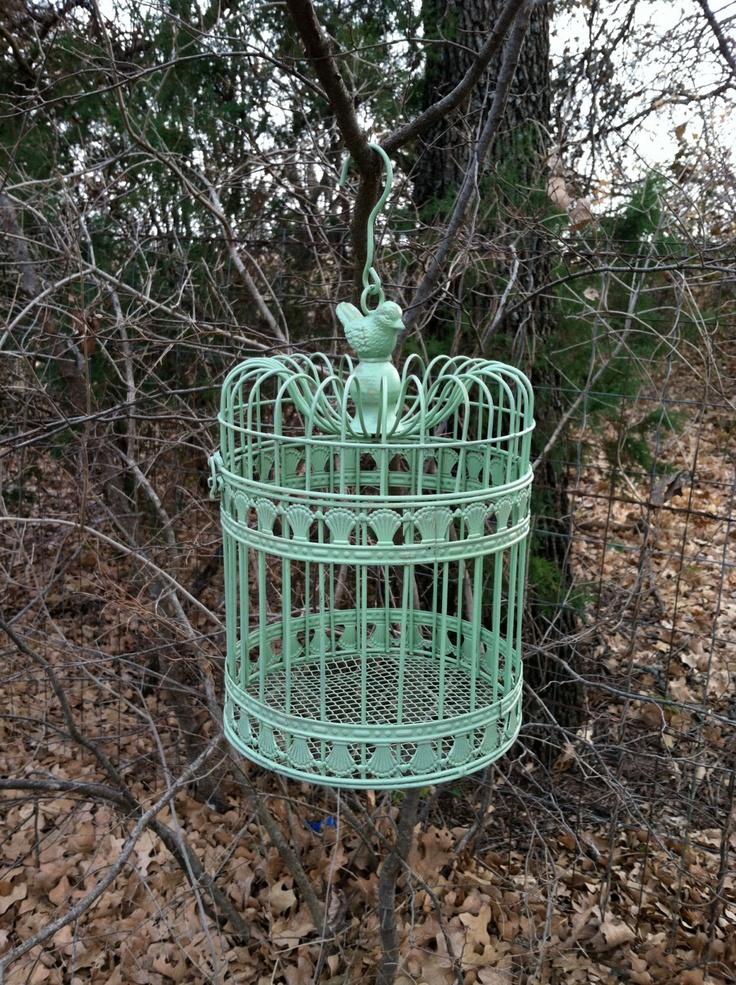 Best 25 Hanging Bird Cage Ideas On Pinterest Birdcage