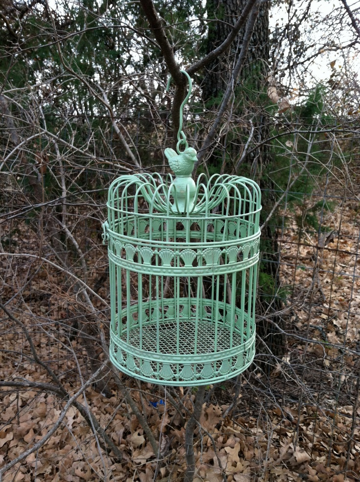 1000 ideas about hanging bird cage on pinterest birdcage decor birdcages and antique bird cages. Black Bedroom Furniture Sets. Home Design Ideas