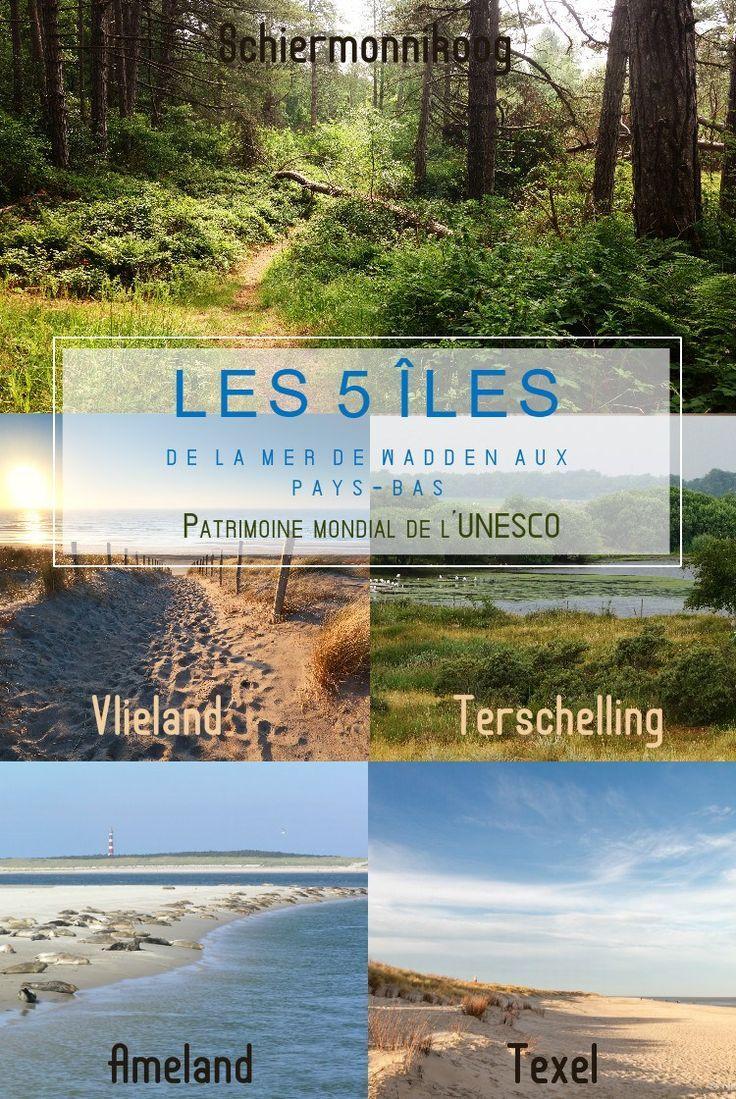 la mer de wadden aux pays-bas que faire aux pays-bas en hollande iles texel