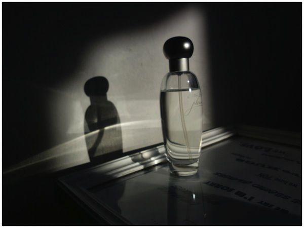 Kolekcje perfum Czytelników - Madlen, Estee Lauder Pleasures