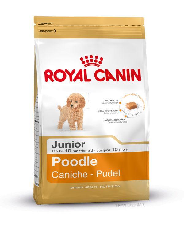 Alleinfuttermittel speziell für #Pudel - #Welpen bis zum 10. Monat. Die Rezeptur von POODLE JUNIOR enthält spezielle Nährstoffe, die dem Pudel zu einem gesunden, weichen Fell verhelfen können. Angereichert mit Omega 3- (EPA und DHA) und Borretschöl. Eine angepasste Zufuhr an Proteinen kann zur Unterstützung des Haarwachstums beitragen. http://www.royal-canin.de/hund/produkte/im-fachhandel/nahrung-fuer-rassehunde/heranwachsende-rassehunde/poodle-junior/