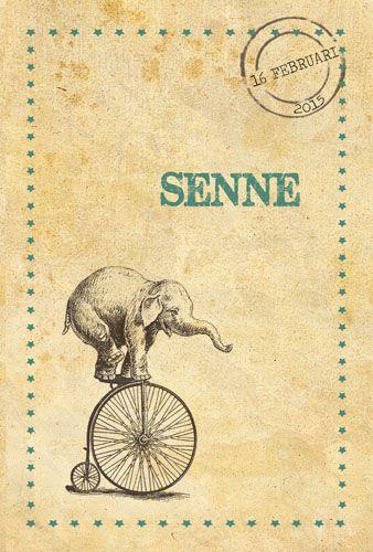 Geboortekaartje Senne - voorkant - Pimpelpluis - https://www.facebook.com/pages/Pimpelpluis/188675421305550?ref=hl (# olifant - olifantje - fiets - ster - sterren - vintage - cirkus - retro - dieren - origineel)