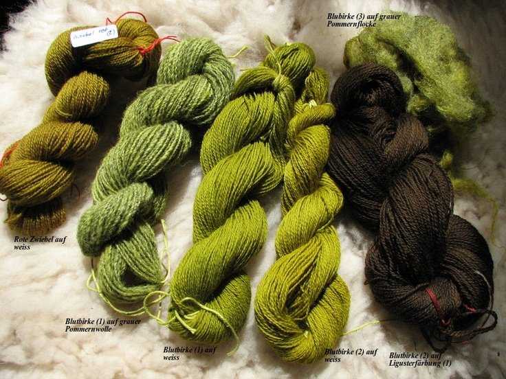 Birch colour variations. Dye with plants. ecofriendly, sustainable, fun and even good-smelling