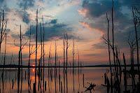 Jersey Seen: Manasquan Reservoir
