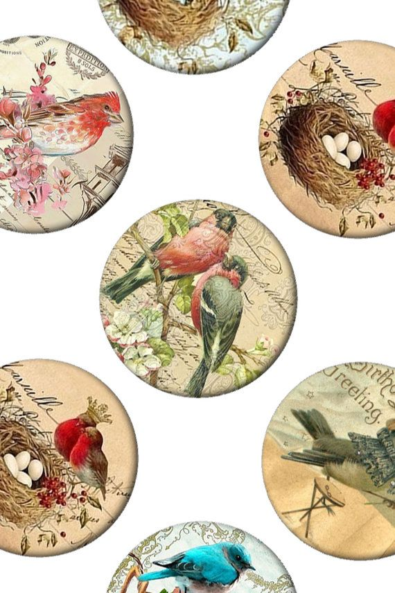 Digital Collage Sheet Vintage Birds 1 inch by Templates4Sellers, $2.50