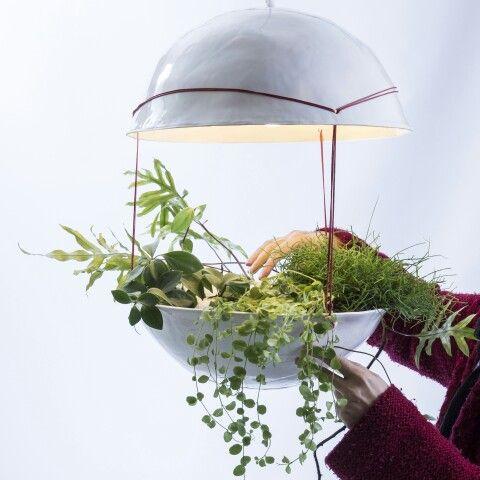 Plantlamp nr5