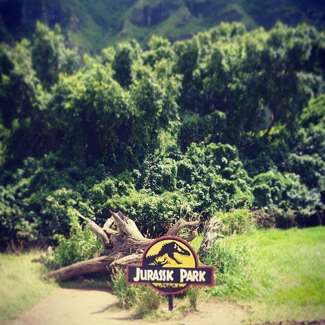 Jurassic Park set location- Kualoa #kualoa #ranch #jurassicpark #dinasour #film #set #location #movie #spielberg #green #nature #sky #samneill️ #naturephotography #natural #trees #flowers #mountains #forest #kualoaranch #hawaii #oahu #landscape  #landscapelovers #honeymoon #travel #photography #naturephotography #hawaiinature #cinema