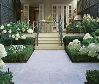 pee gee hydrangeas and impatiens with boxwood border. for Lisa's planter