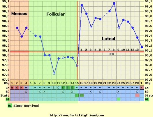 Living with PCOS: fertility charts are good for more than planning pregnancy....a good method for tracking ovulation, cycles, etc. when your cycles are chaotic w/ PCOS!