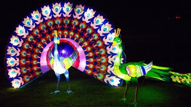 Chiswick House Gardens in London - Magical Lantern Festival