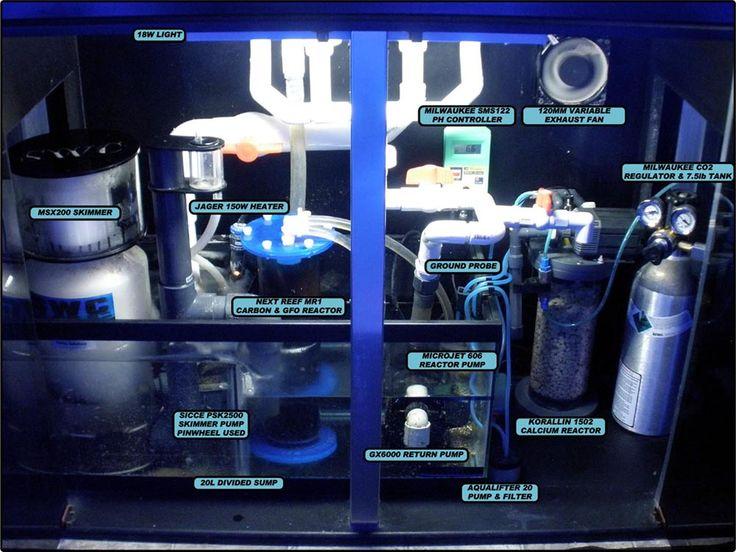 Beautiful plumbing 90g