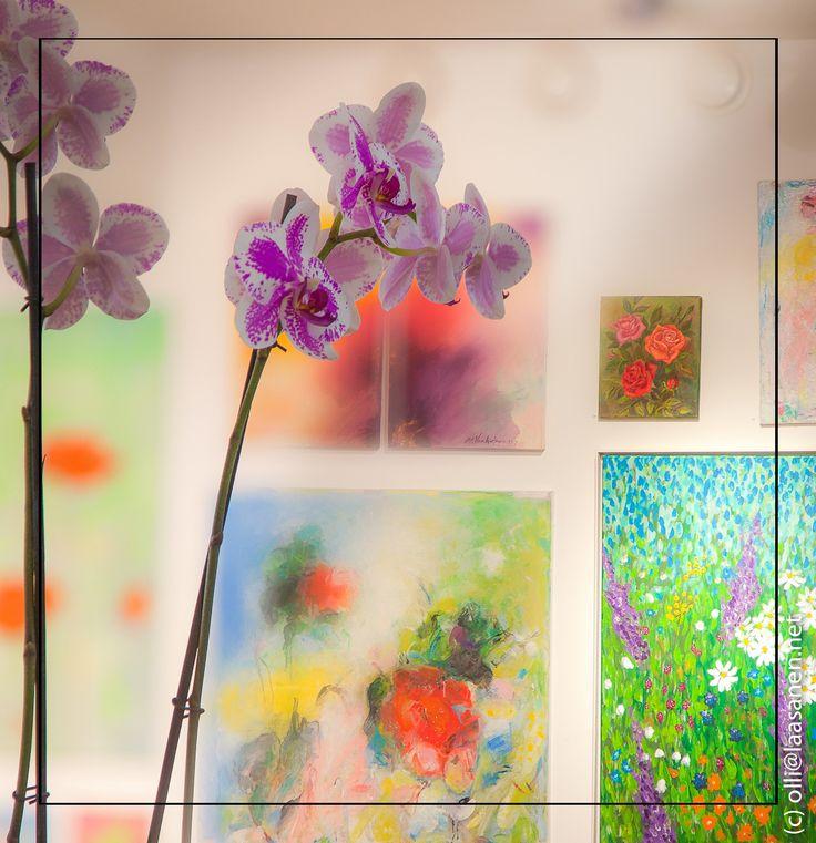 Flowers – Kukkia | Pulse of Change – Muutoksen syke