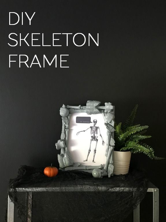 Skeletons The Frame of Life