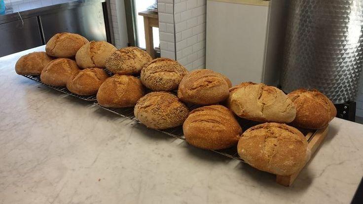 Fattoria Barbialla Nuova, hand made sour dough bread, fresh bread in the morning