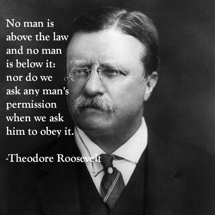 Theodore Roosevelt Quotes: 197 Best Theodore Roosevelt Images On Pinterest