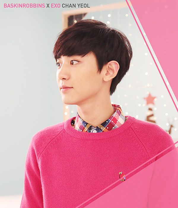 Baskin Robbins features EXO-K for December, 2014 promotions.