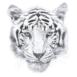 Love Mae Muursticker Tiger